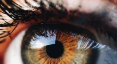 Excellent Article About Eye Care That You Should Try
