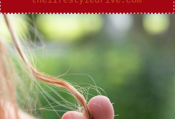Tips to Prevent Hair Loss