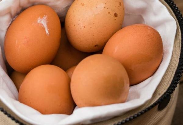Quick Guide To Understanding Your Cholesterol